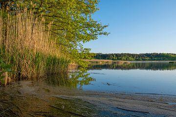 Vijver bij Mönau in de Oberlausitzer Heide- en Vijverslandschap van Holger Spieker