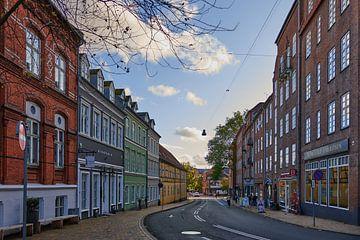 Rue à Odense sur Marieke de Jong