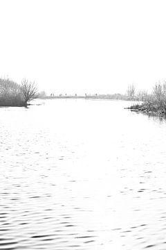 Doorkijkje naar de Reeuwijkse Plassen in zwartwit von Leontien van der Willik-de Jonge