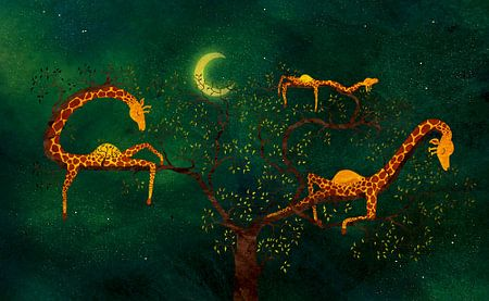 De giraffenboom
