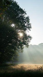 Prachtige zonsopkomst van Sander Huizinga