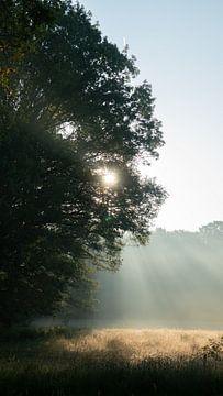 Schöner Sonnenaufgang von Sander Huizinga