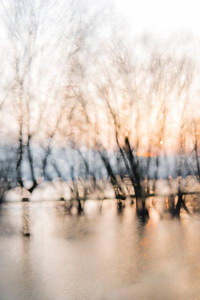 Water Wonderland van Erna Böhre
