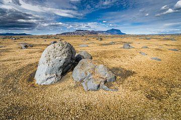 Paysage avec champ de lave à l'intérieur de l'Islande sur Chris Stenger
