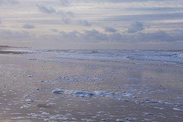 Het strand in al haar schoonheid von Willy Sybesma