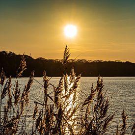 Zonsondergang bij Maasmechelen van Okko Huising - okkofoto