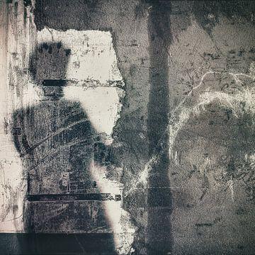 Schaduw op de muur van Marijke de Leeuw - Gabriëlse