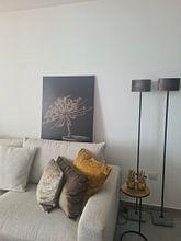 Klantfoto: Stilleven met  grote gedroogde berenklauw in grijze stenen kruik (1) van Mayra Pama-Luiten, op canvas