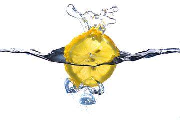 splash von Leo Tholens