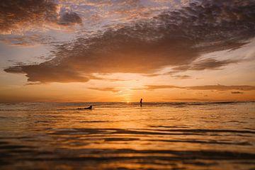 Surfer sur Mentawai 2