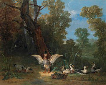 Eenden rustend in de zon, Jean-Baptiste Oudry