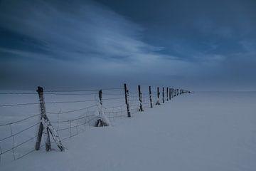 Urho Kekkonen N.P. Lappland - Rentier Zaun von Martin Boshuisen - More ART In Nature Photography