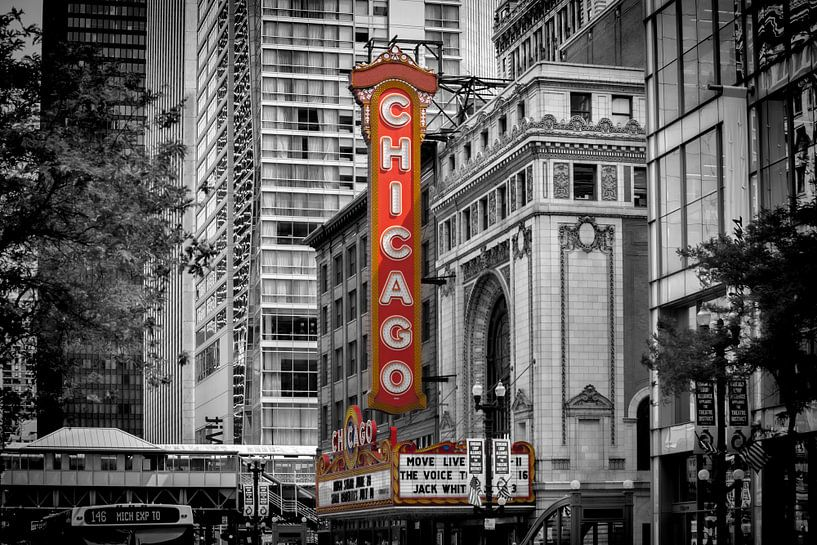 CHICAGO State Street van Melanie Viola