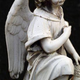 Een engel van marmer van Jolanta Mayerberg