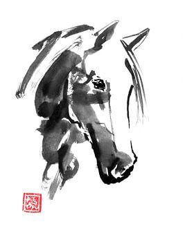 horse head 02 sur philippe imbert