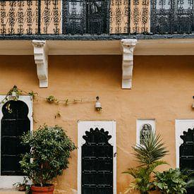 Pastel kleurig geel fort in India met leuke plantjes van Yvette Baur