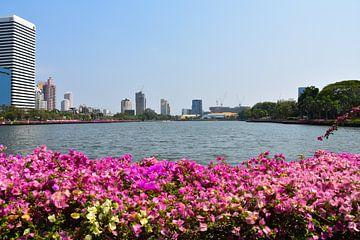 Der Lumphini Park in der thailändischen Großstadt Bangkok von David Esser