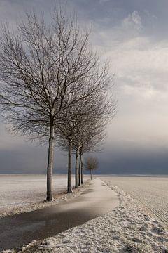 Winter in Groningen van Angelique Boyer
