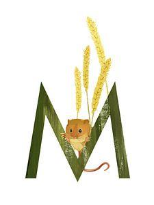 M - Maus