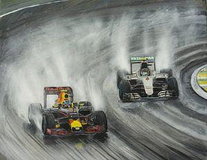 Max Verstappen Brazilie 2016 van