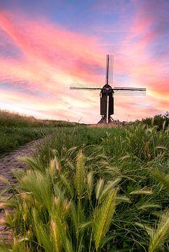 Mühle in Heusden