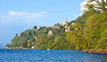 Pino sulla Sponda del Lago Maggiore van Gisela Scheffbuch