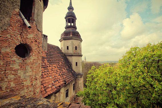 Castle Kasteel Chateau van Michelle Casteren