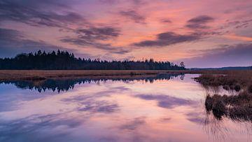 Sonnenuntergang an einem Teich in Drenthe. von Yvon van der Laan