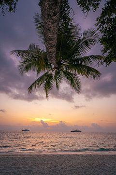Sonnenuntergang im Paradies von Michiel Dros