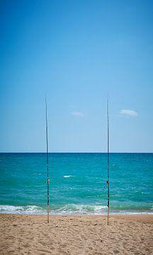 zeevissen von Peter van Mierlo