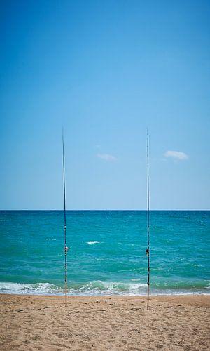 zeevissen van