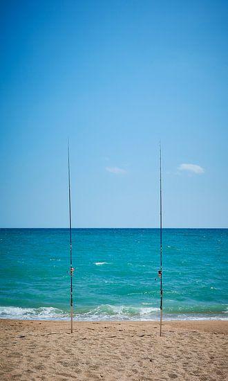 zeevissen van Peter v Mierlo