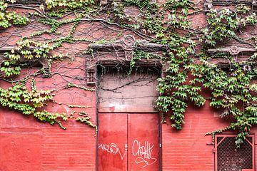 Leben an der roten Wand von Irene Lantman