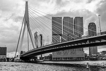 erasmusbrücke rotterdam von Karin vanBijleveltFotografie