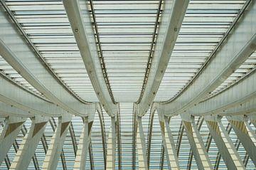 Lijnen in het dak van station Luik Guillemins