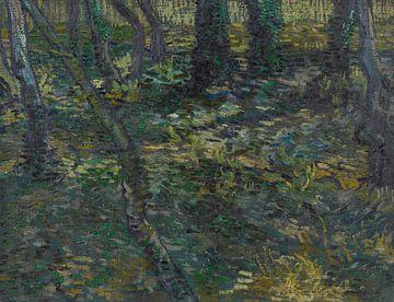 Unterwuchs mit Ivy, Vincent van Gogh,