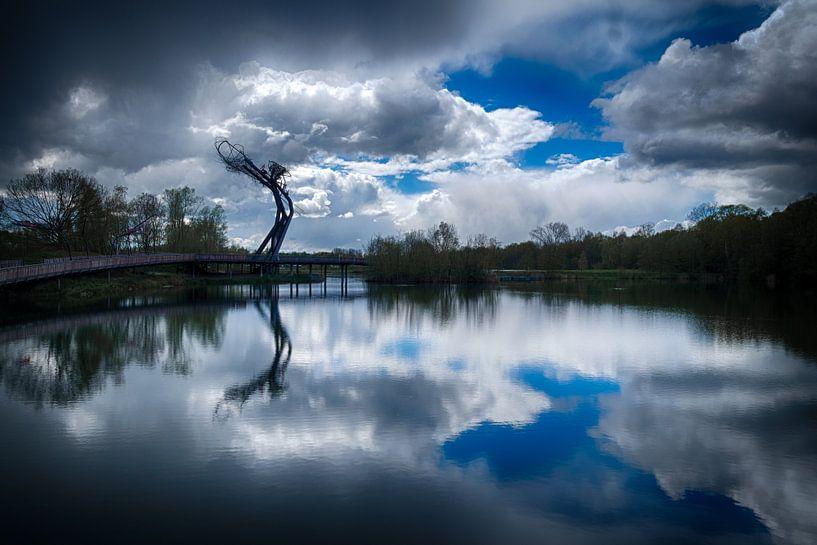Tomorrowland bridge van Rudy De Maeyer