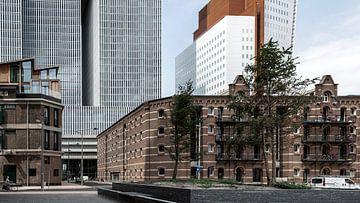 Rotterdam von Jeanette van Starkenburg