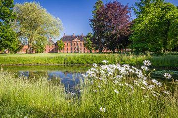 Blumenwiese im Park von Schloß Bothmer in Klütz von Christian Müringer