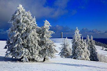 Sneeuwbomen op de Felberg van Patrick Lohmüller