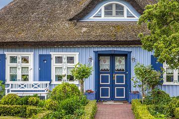 Schönes blaues Reetdachhaus in Zingst von Christian Müringer