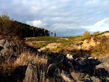 Dreigende luchten boven ruig en verlaten gebied van M de Vos