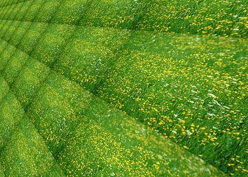 Flower meadow van Leopold Brix