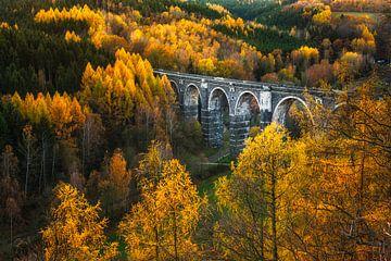 Herbst am Viadukt von Daniela Beyer