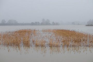 Onder water van Gerrit van Leeuwen