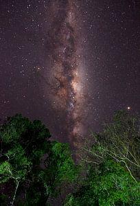 Melkweg in de jungle van Lucas De Jong