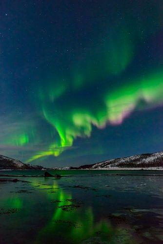 Noorderlicht, Poollicht of Auroroa Borealis in de nachthemel in Noord-Noorwegen