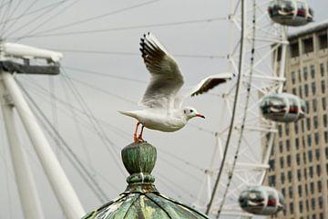 London Eye van Jacintha Van beveren