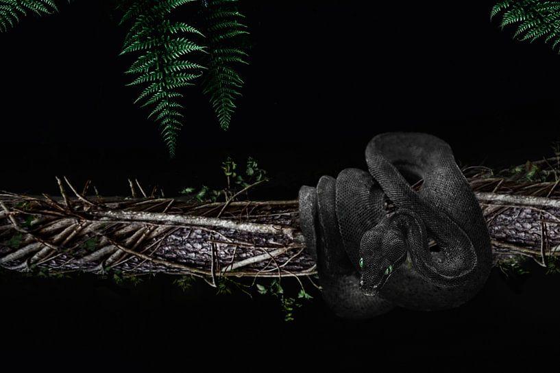 The black snake van Elianne van Turennout