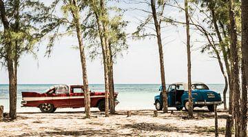 Strand von Kuba, Cayo Jutias von Raf Verbraeken